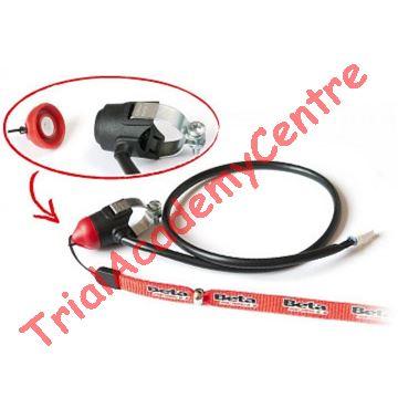 Immagine di Kit Dispositivo arresto motore con magnete Betamotor