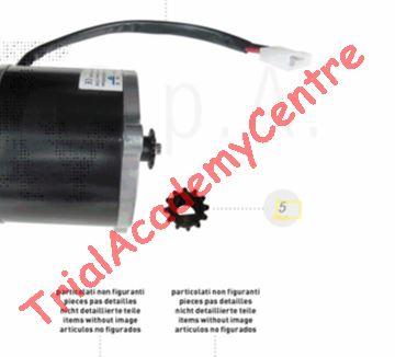 """Immagine di Pignone Mini trial elettrico Beta 16""""/20"""""""